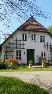 Tierkommunikation Aufbaukurs @ Thedinghausen | Niedersachsen | Deutschland