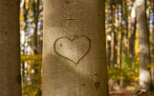3 Dinge, die uns die Natur über wahres Lebensglück lehrt