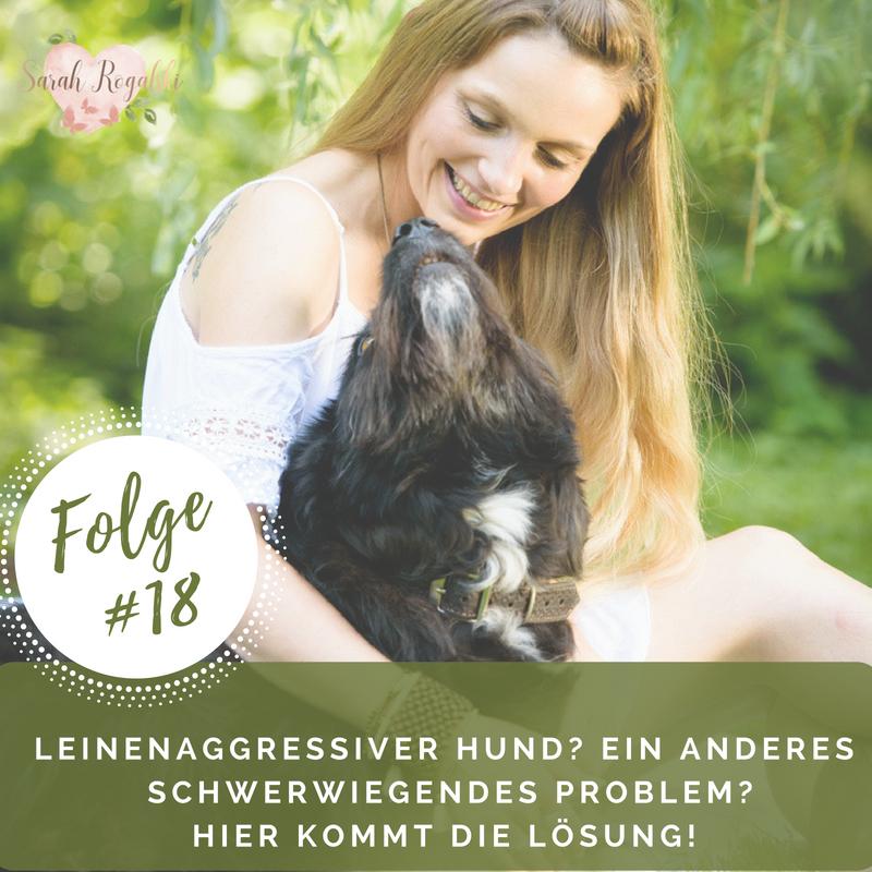 Leinenaggressiver Hund? Ein anderes schwerwiegendes Problem? Hier kommt die Lösung!